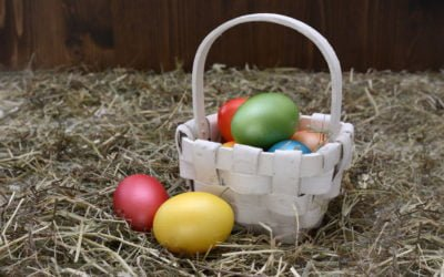 Look After Your Nest Egg This Easter