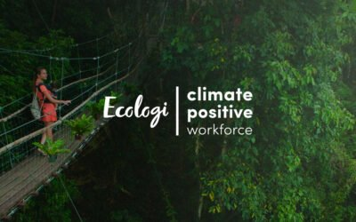 NorthStar Is Now a 'Climate Positive' Company